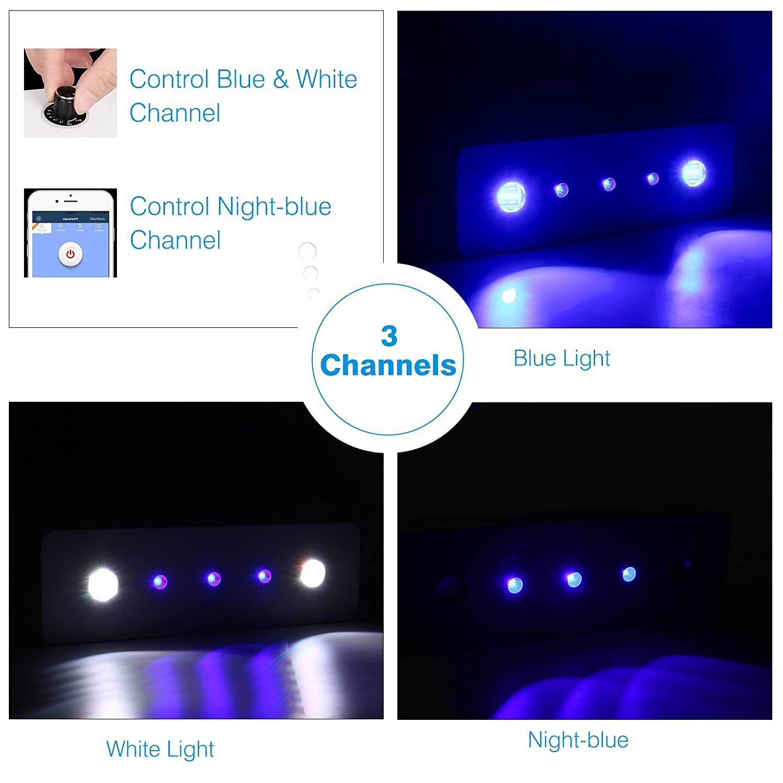 TOPLANET WIFI LED Lámpara de Acuarios 300 W COB Mando a distancia Led para Acuario 3 Canales Iluminación para Peces de Acuario/Coral / Plantas Blanco/Azul: ...