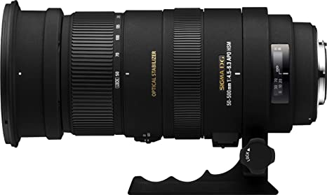 Review Sigma 50-500mm f/4.5-6.3 APO