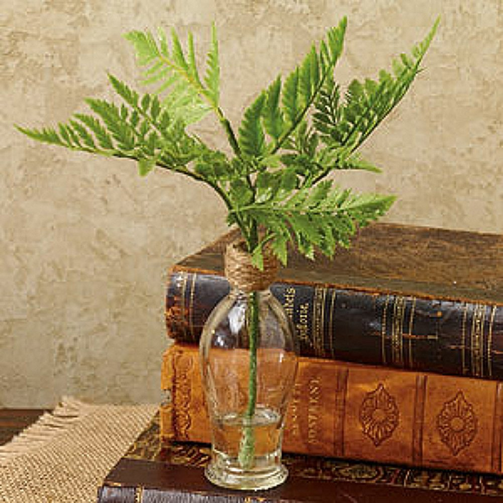 The Country House Collection Decorative Fern in Glass Bottle 2'' x 8'' (Fern)