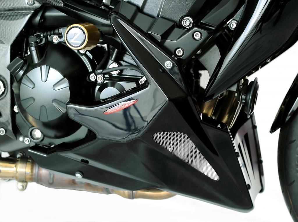 Cubierta de motor en malla para Kawasaki Z750 04-11/Z750S/Z750R 11-12/Z1000 03-09, color negro/plateado Powerbronze