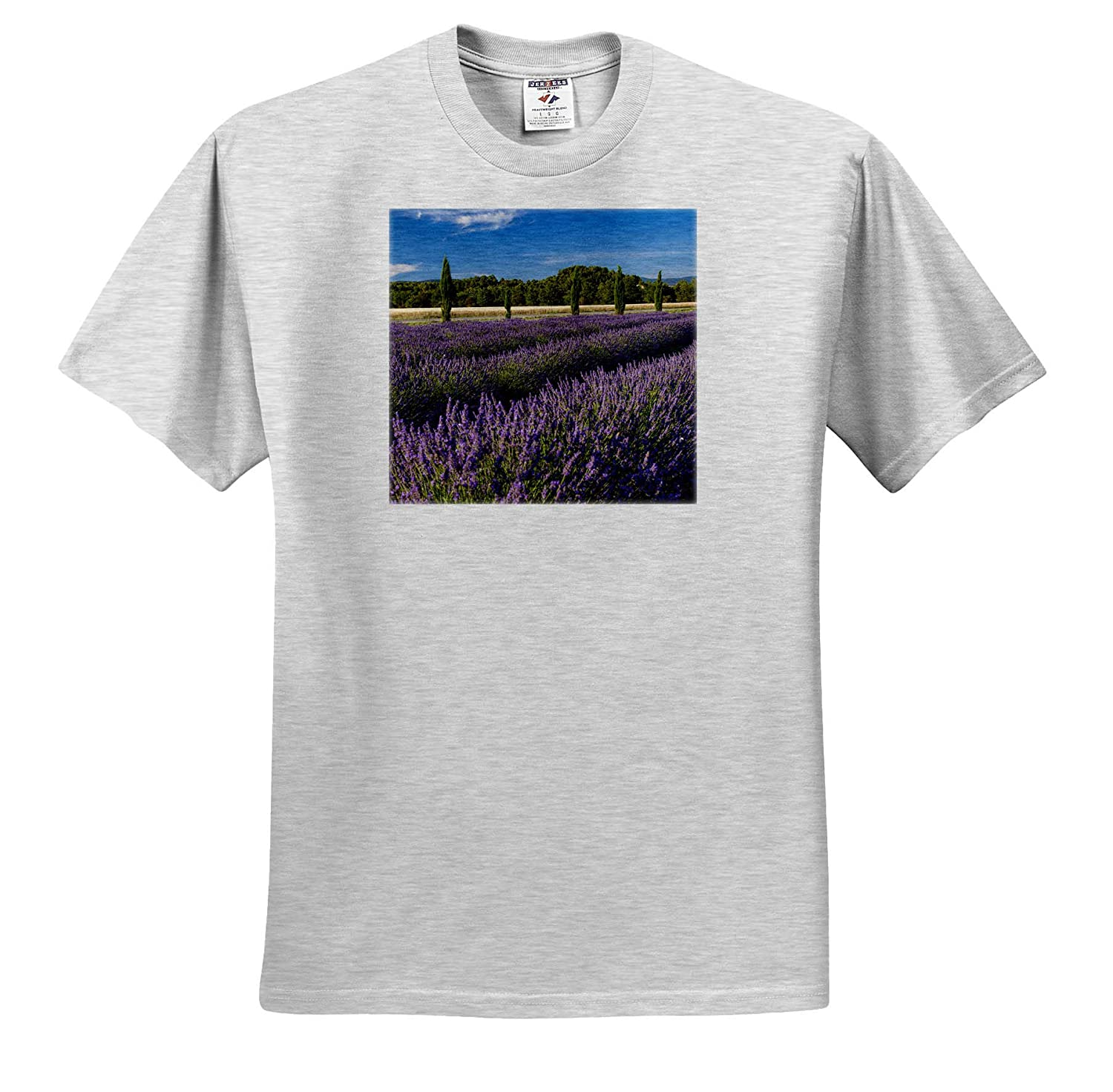 Provence France ts/_313107 3dRose Danita Delimont Rows of Lavender Provence Adult T-Shirt XL