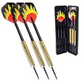 Winline Phoenix 23/22/21/20 Gram Steel Darts Set Brass/Sliver Barrels