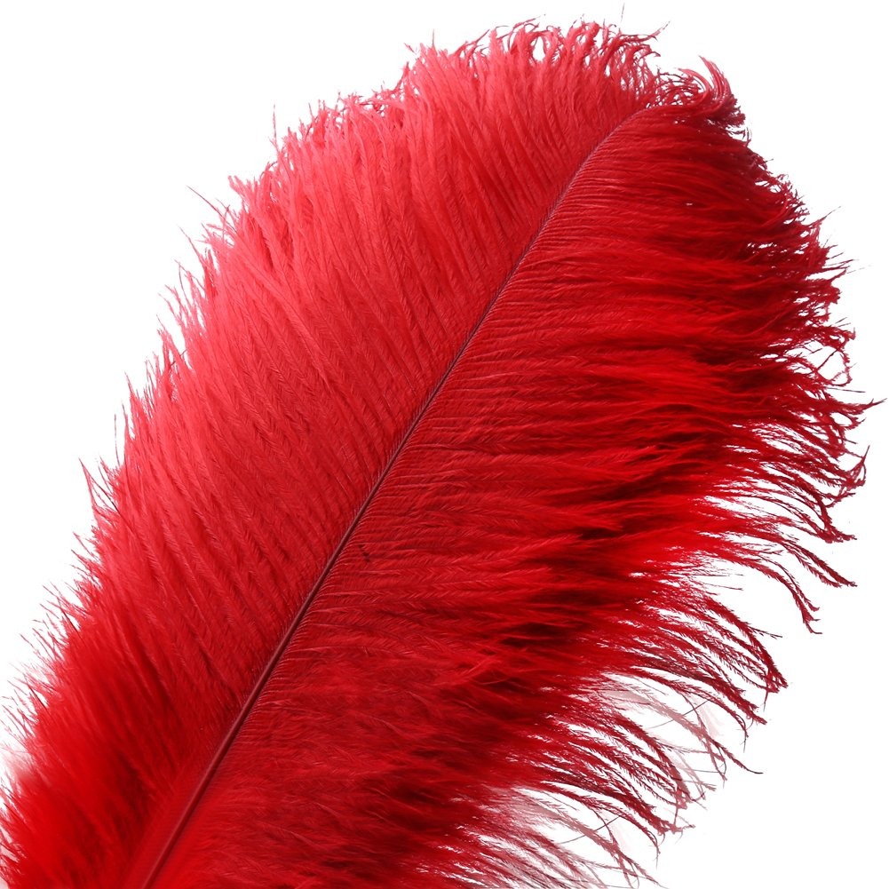 10pcs Natural Ostrich Feather Craft 14-16inch(35-40cm) Plume for Wedding Centerpieces Home Decoration (Red) VoilaLove