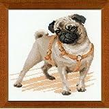 RIOLIS Pug Dog Cross Stitch Kit, Multi-Color