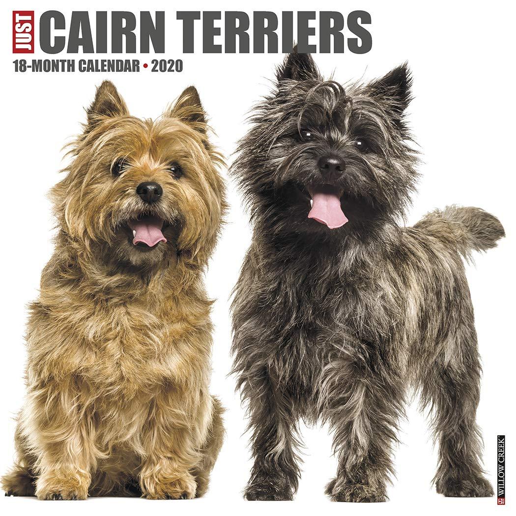 Just Cairn Terriers 2020 Wall Calendar Dog Breed Calendar Willow Creek Press 9781549205682 Amazon Com Books