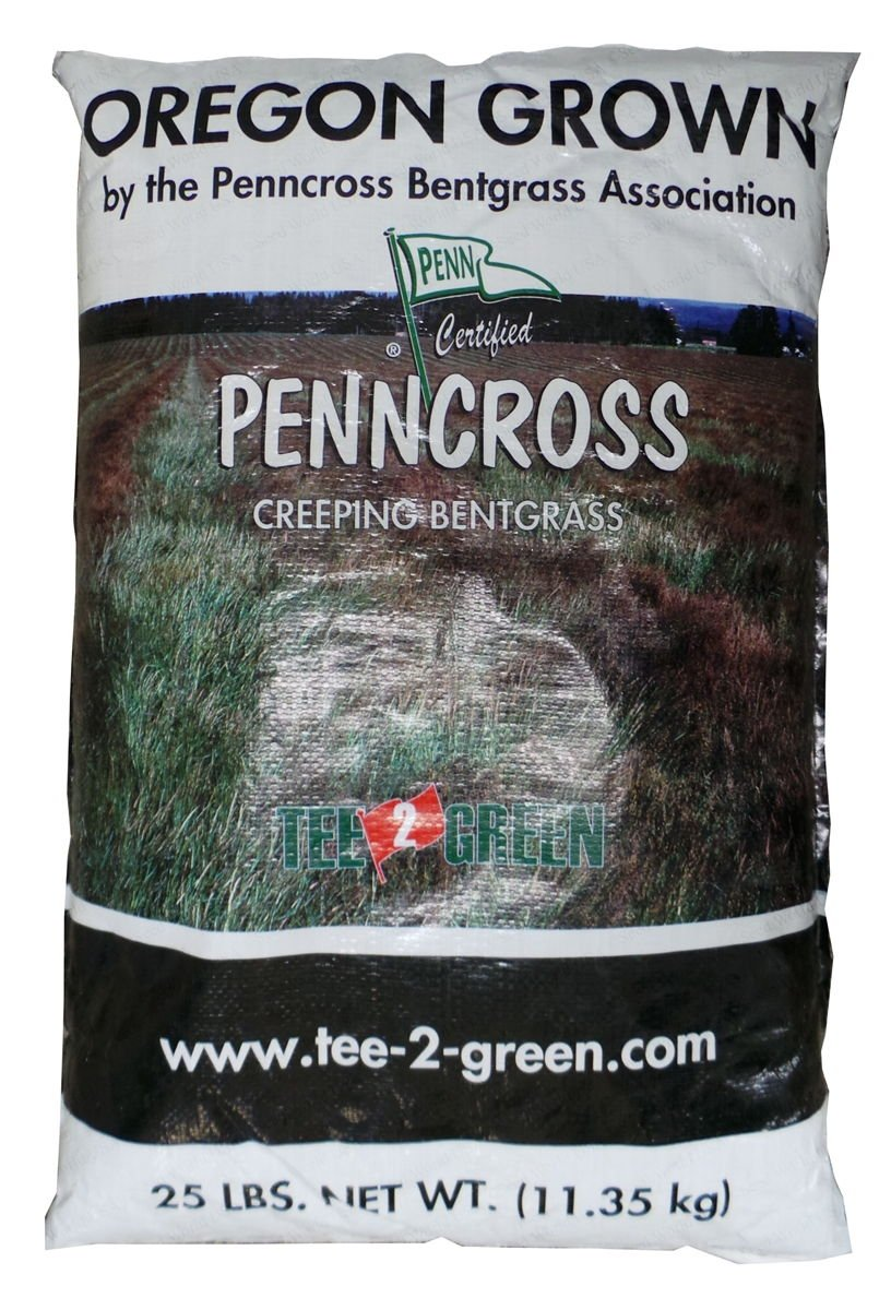 Penncross Bentgrass Putting Green Seed - 1 Lb. by Penncross