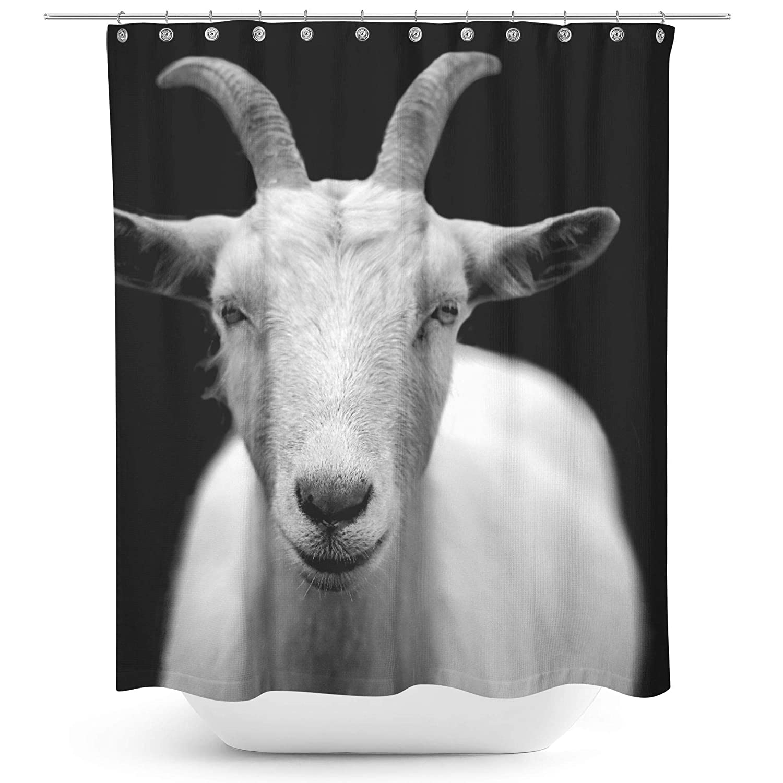 Amazon Westlake Art Goat Black 71x74 Canvas Print Wall Art