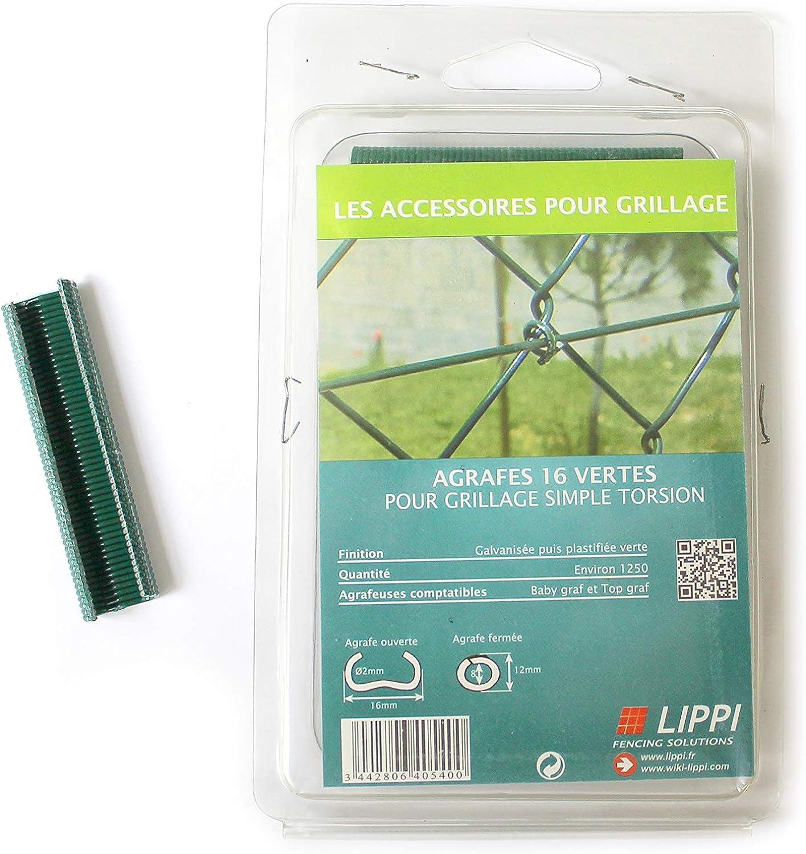 LIPPI Agrafes /à grillage Plastifi/ées Vertes 16mm Boite 1250