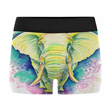 INTERESTPRINT Mens Boxer Briefs Underwear Animals Elephant XS-3XL