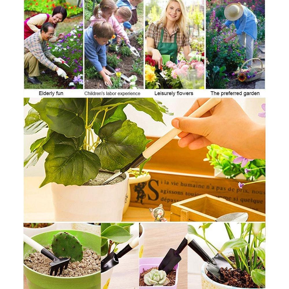 Kit de herramientas de jardinería en miniatura, Aolvo con suculentos ...