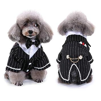 Amazon.com: Vevins - Disfraz de perro con lazo negro, traje ...