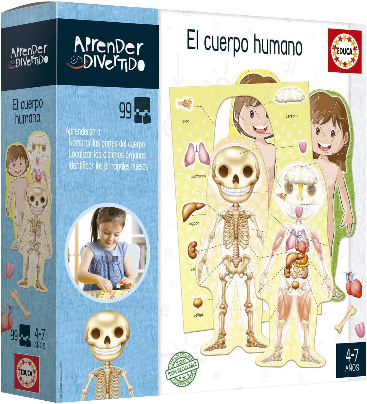 Educa- Aprendo Aprender es Divertido El Cuerpo Humano, Juego educativo para niños, a partir de 4 años (18701) , color/modelo surtido: Amazon.es: Juguetes y juegos