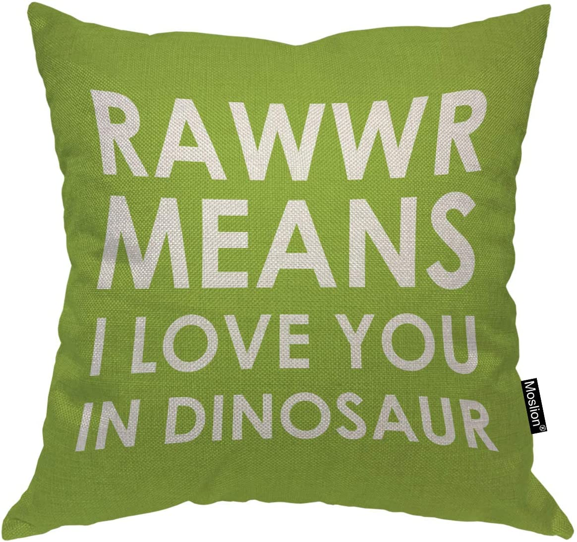 Moslion Throw Pillow Cover Rawwr Means I Love You in Dinosaur 18x18 Inch Funny Cute Phrase Green White Square Pillow Case Cushion Cover for Home Car Decorative Cotton Linen