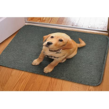 Amazon Com Youngerbaby Funny Doormat Dogs Men Women Childern