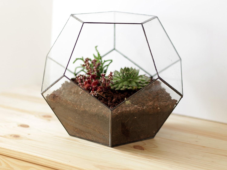 Waen Terrarium Collection Large Glass Geometric Terrarium Container