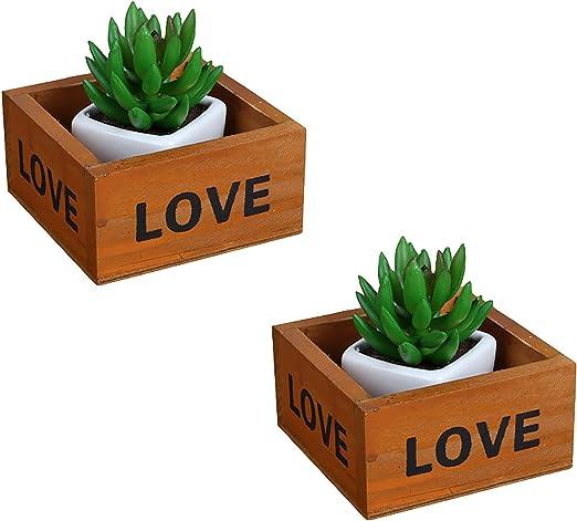 Mini caja de almacenamiento organizador de escritorio de madera para manualidades, Flores, plantas, joyas (Pack de 2): Amazon.es: Jardín