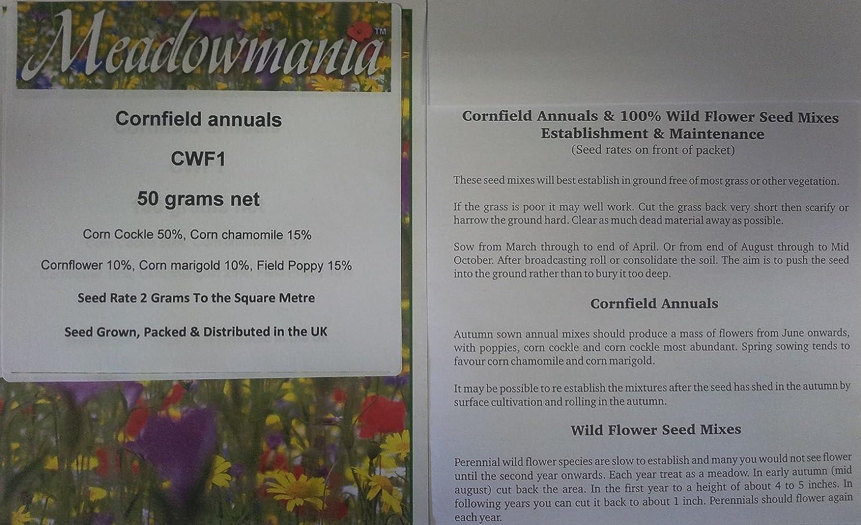 Cornfield annual standard UK wild flower seed mix MeadowMania 50 grams 5 species includes Poppy & Cornflower
