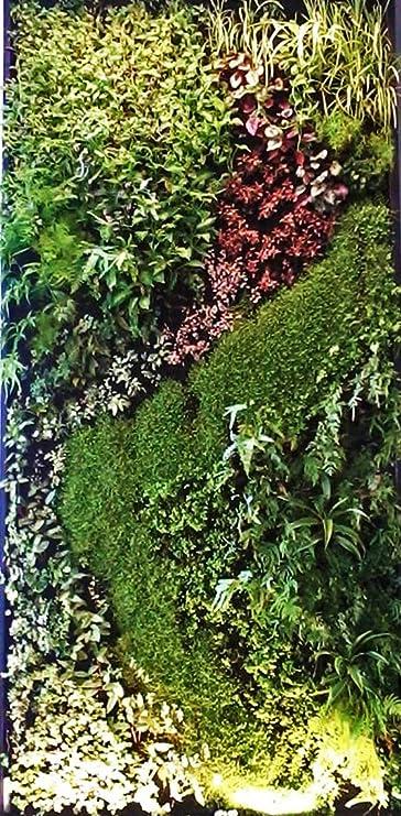 Sistema modular de pared vertical con plantas para el jardín, la oficina, el hogar, decoración de interiores comercial; las plantas no están incluidas: Amazon.es: Jardín