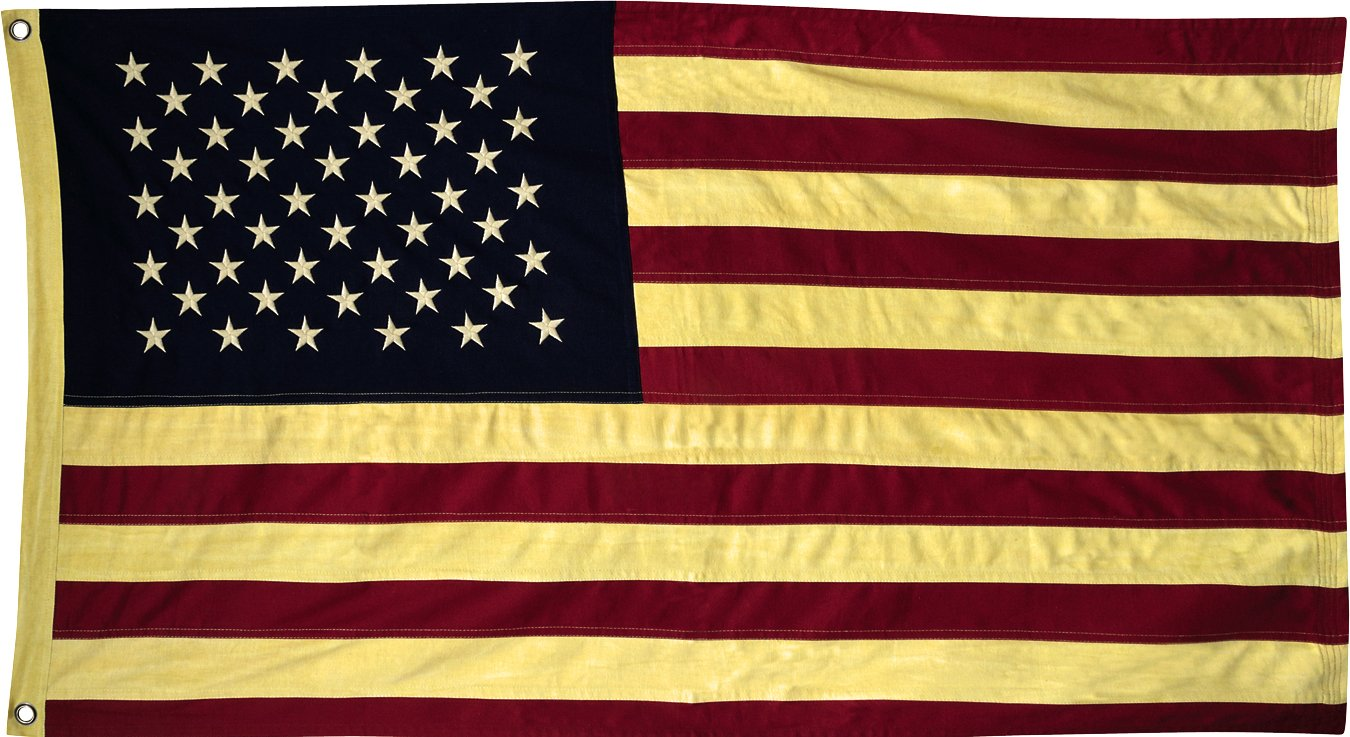 Amazon.com: Aged American Flag - Large: Home & Kitchen