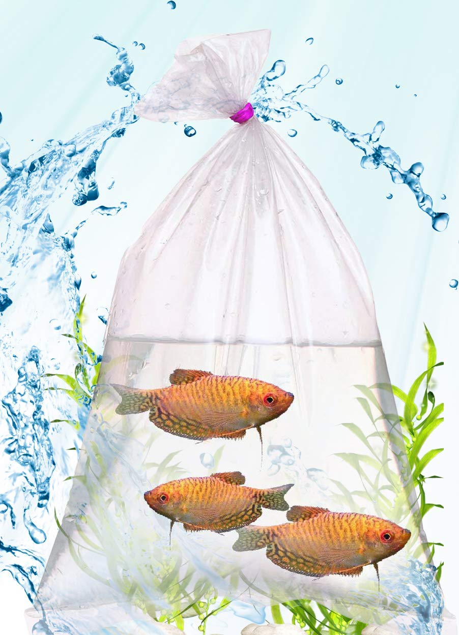 APQ Pack of 100 Plastic Fish Bags 12 x 15. Thickness 2 Mil. Low Density Polyethylene Bags 12x15. Clear Bags for Industrial, Food Service Needs. Fish Transport Bags for Packing and Storing.
