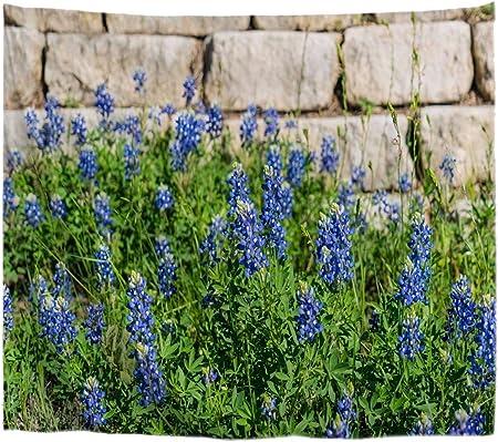 A.Monamour Tapices Flores Azules Texas Bluebonnet Pared De Ladrillo De Piedra Blanca Soleado Verano Paisaje De Jardín Colgar En La Pared Tapiz Ventana Cortina Dormitorio Sala De Estar 102x153cm: Amazon.es: Hogar