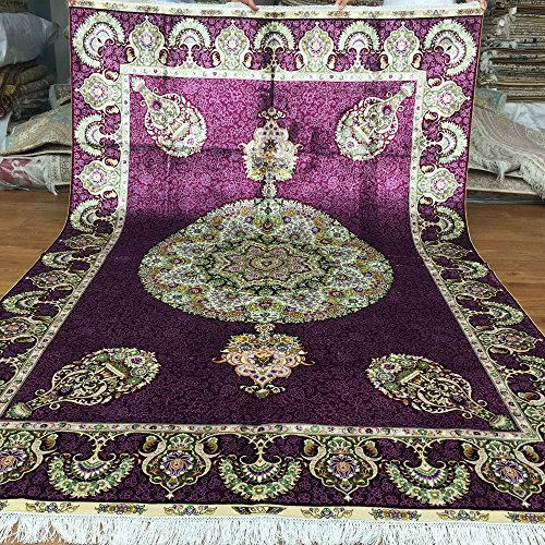 Living Room Persian Rug: Amazon.com: Yuchen New 5.5'x8' Hand Knotted Silk Persian