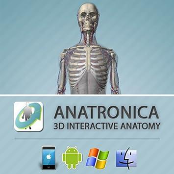 anatronica