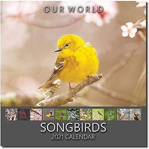 Our World: Songbirds 2021 Bird Wall Calendar. US Songbirds Calendar