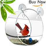 Clear Window Birds Feeder Squirrel Proof Birdhouses Stand Holder Outside Bird Seed Feeder for Wild Birds Hummingbirds etc 2 Strong Suction Cups with Hooks Mount to Glass Best Gift-NEWCREA (Circular)