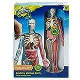 Edu Science Lab Squishy Human Body