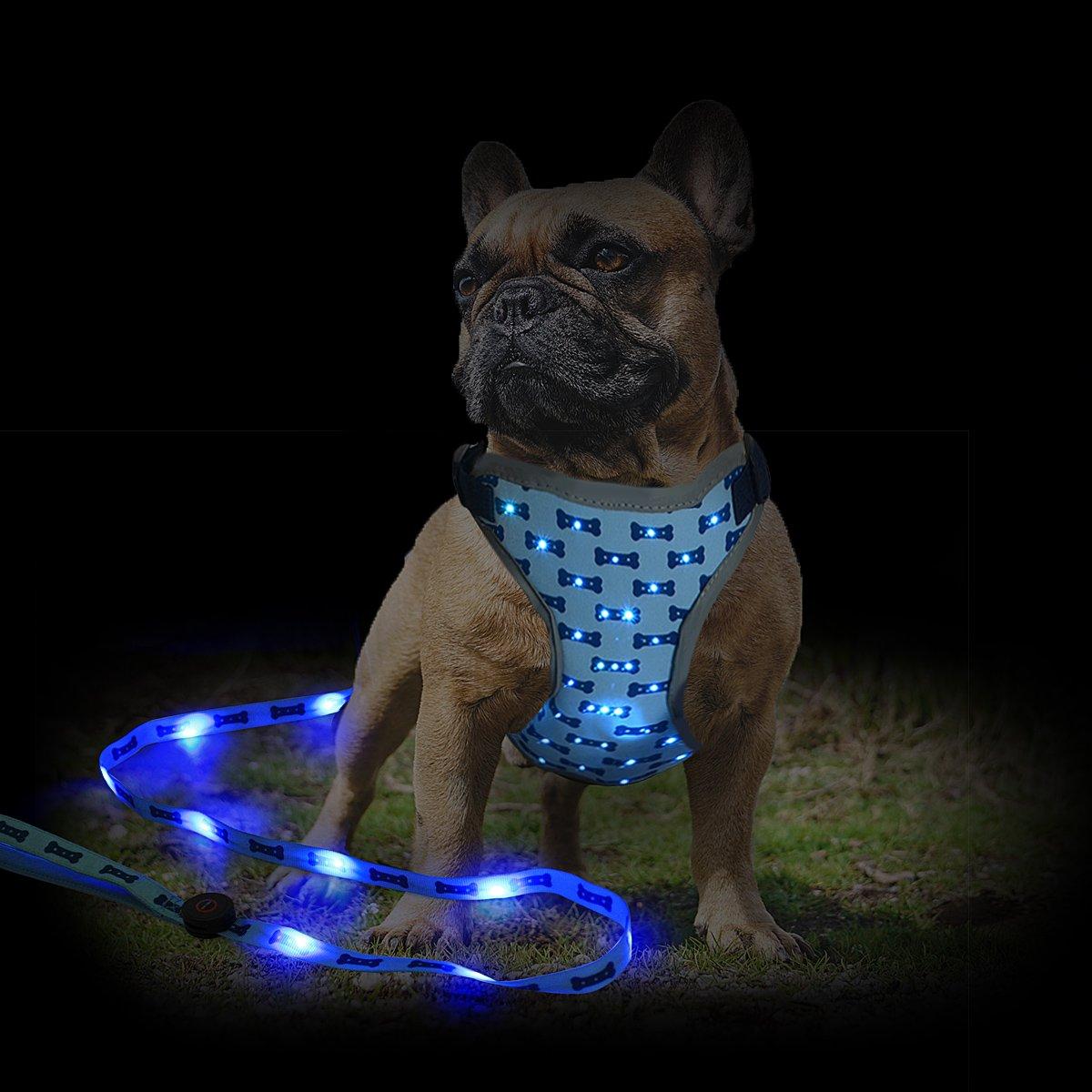 Namsan LED Dog Harness and Leash Set- Outdoor Adjustable Pet Vest Safety Dog Leash for Medium Dogs, Blue by Namsan