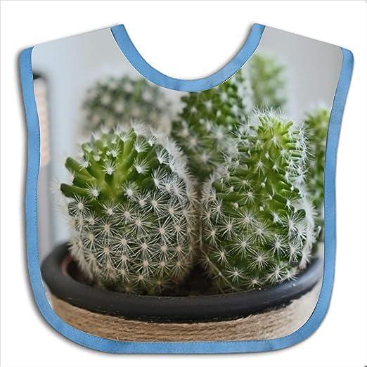 ff37cc189 Amazon.com: Baby Bib Large Toddler Cactus Feeding Reflux Drool ...