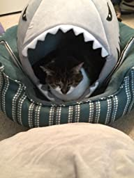 Amazon.com : Grey Shark Bed for Small Cat Dog Cave Bed