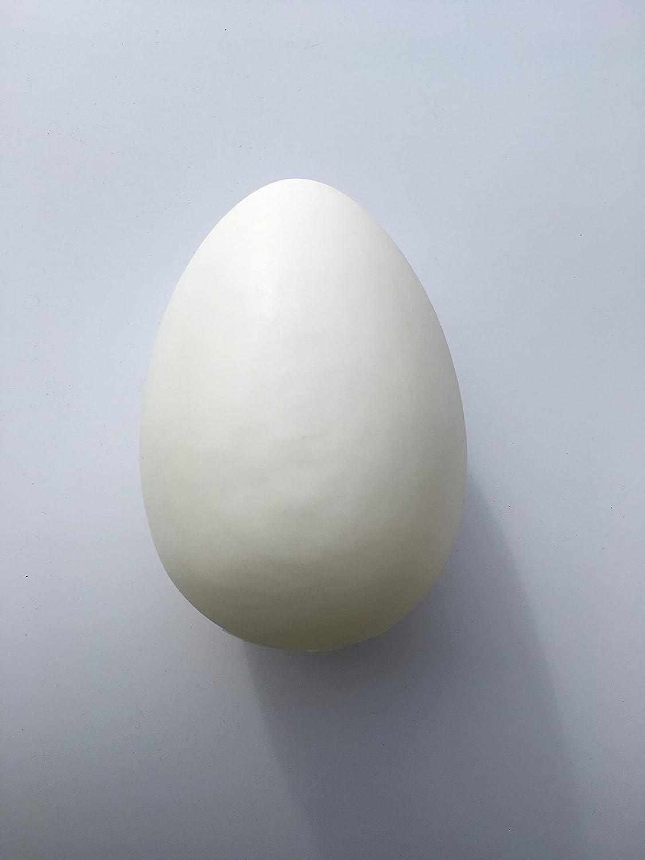 Grand /œuf de P/âques XL /Équerre /à /œufs pour d/écoration de P/âques r/éplique en Plastique ERRO Strausei 16572