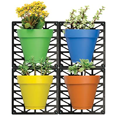 Ideaworks Wall-Mount Planter Set - Decorate Wall with Real Plants - Includes 4 Wall Mounts & 4 Planters - Great for Indoor & Outdoor Walls - Includes Installation Hardware, Multi-Colored, : Garden & Outdoor