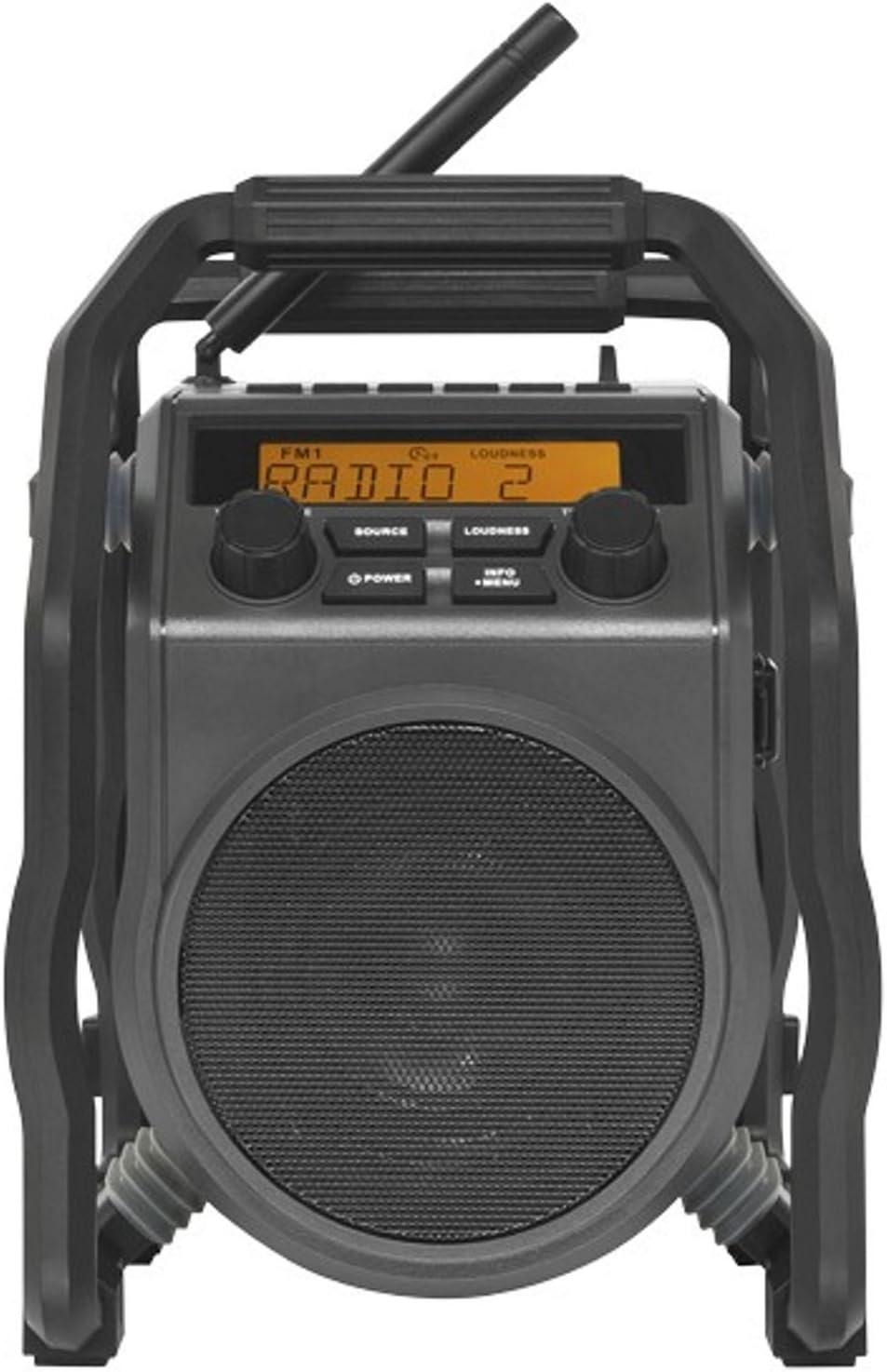 PerfectPro ubox 100 FM de Radio para obras, RDS, AUX, antigolpes: Amazon.es: Electrónica