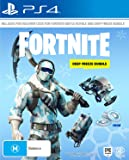 Fortnite Deep Freeze Bundle - PlayStation 4