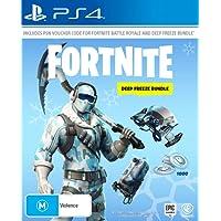Fortnite: Deep Freeze Bundle (PlayStation 4)