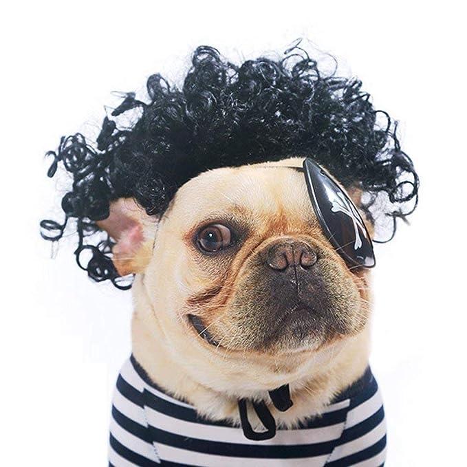 Homesupplier Pelucas de perro a la moda para perros, cachorros y gatos, rizos explosivos de bulldog francés (negro): Amazon.es: Productos para mascotas