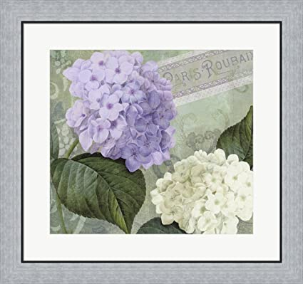 Amazoncom Hortensia 1 By Color Bakery Framed Art Print Wall - Color-hortensia