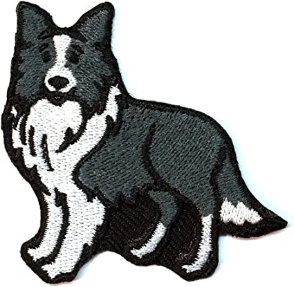 or Embroidered Hat Embroidered Patch Border Collie Dog