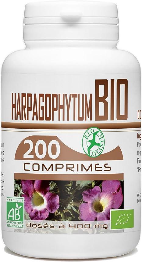harpagophytum arthrose