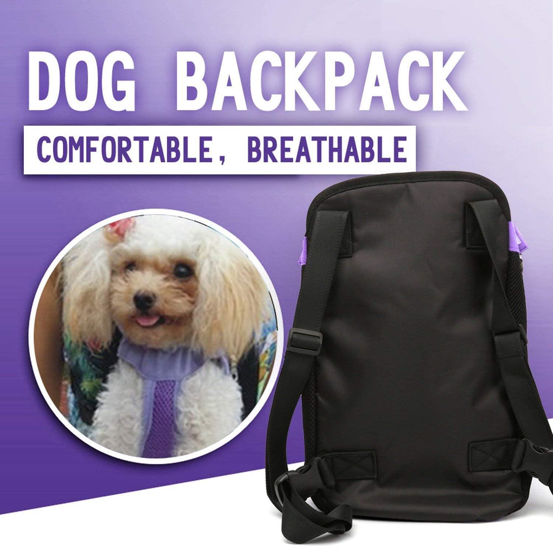 Denim /& Canvas sac de transport pour animaux domestiques M bleu Sac /à dos ventral pour chien et chiot de transport Ducomi/®