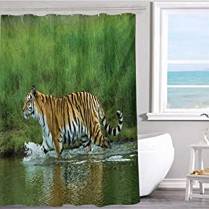 """MKOK White Shower Curtain 54""""x72""""inchSafari,Siberian Tiger Panthera Tigris Altaica in The Water Greenery Lake River Wildlife,Apricot Green Polyester Bathroom Shower Curtain Set with Hooks"""