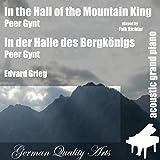 In Der Halle Des Bergkönigs ( Peer Gynt ) (feat. Falk Richter) - Single