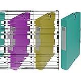 Exacompta - Réf. 50403E - Boite de classement à élastiques Exabox - Dos 40mm - Format 25x33cm pour documents A4 - Carte lustrée 600g/m² - Vert