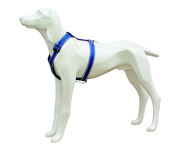 Freedog FD4002611 - Arnés Nylon Reflectante, para Perro, Color ...