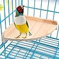 Pieds pour cages à oiseaux