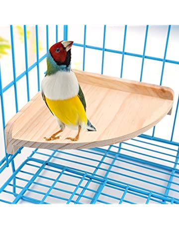 10 Bird Bath Cage Clip On 2 Hook 7cm Finch Canary Stainless Steel Removable Dish Pet Supplies Bird Supplies