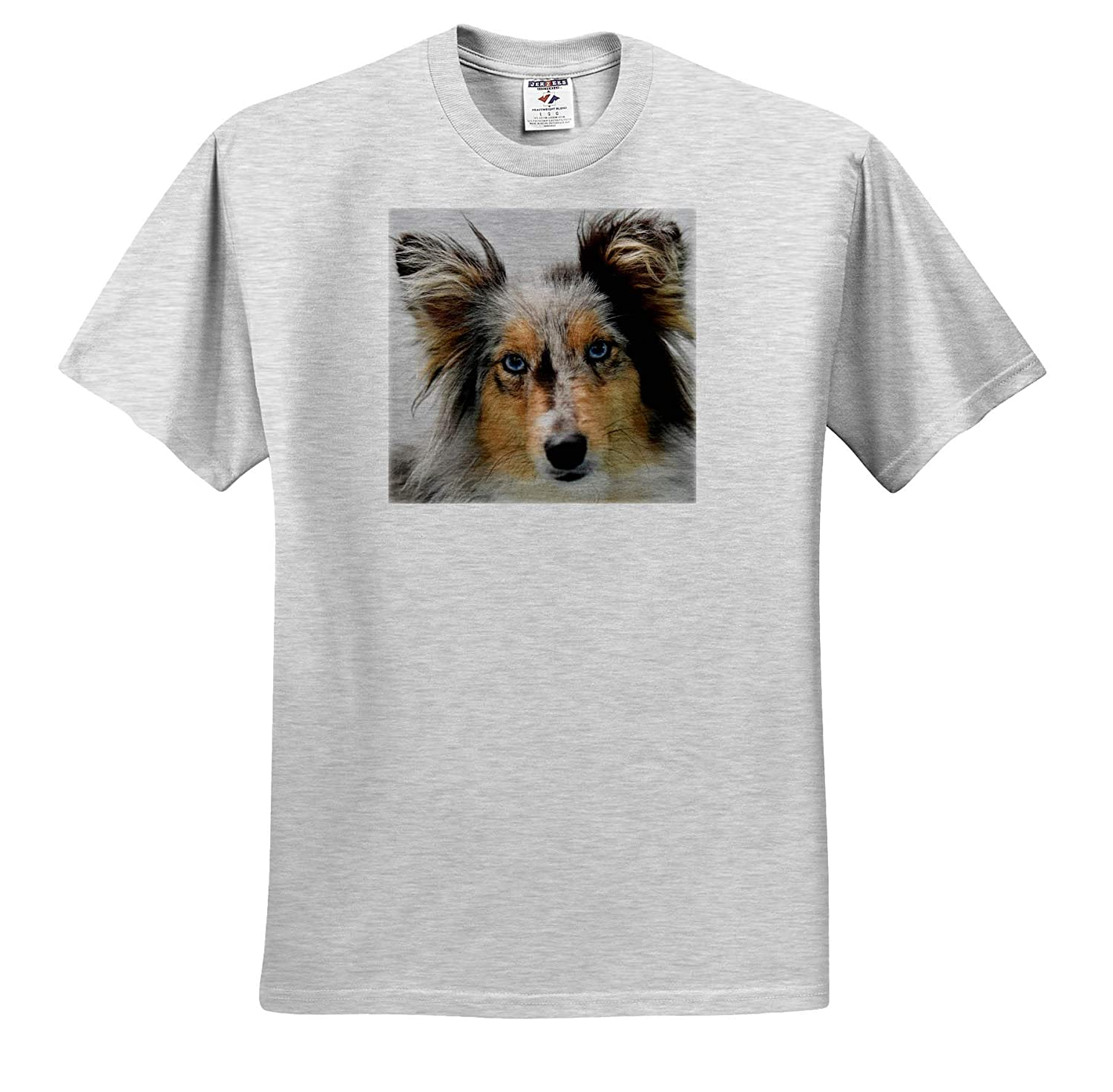 Portrait of a Australian Shepherd Dog Doglover ts/_319044 3dRose Sven Herkenrath Dog Adult T-Shirt XL